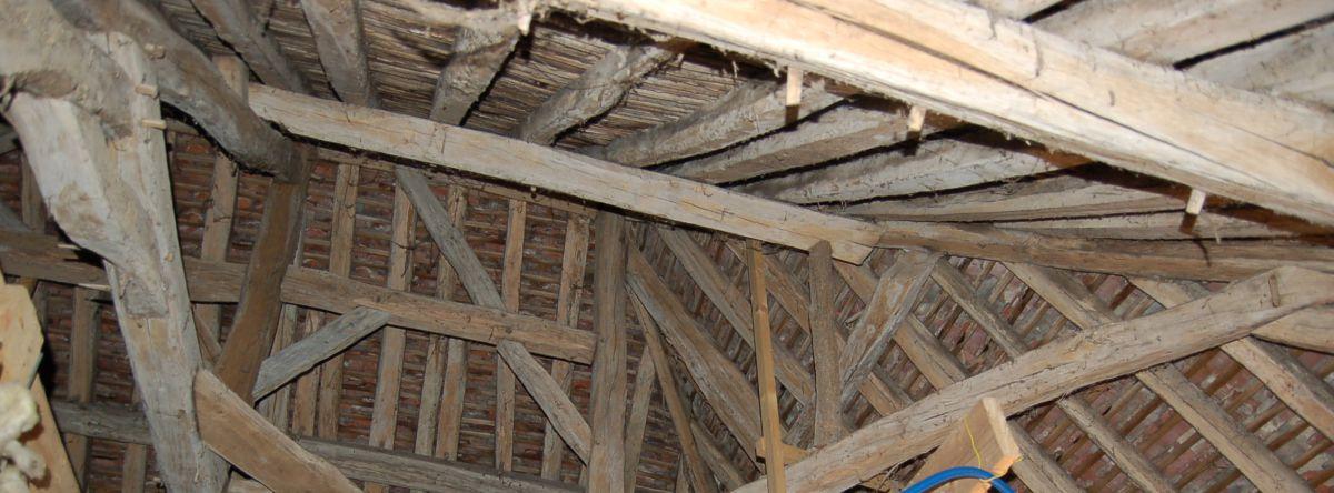 Traitement contre les insectes du bois dans la Nièvre et l'Yonne