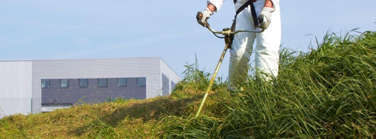 Entretien de vos espaces verts : débroussaillage